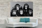 Ölbild PopArt MonkeyBusiness 80x120cm Affen/ 30071