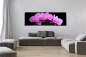 Bild Orchidee 140x45cm pink/ 35985