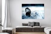 Bild Lion King 140x95cm Glas/ 35978